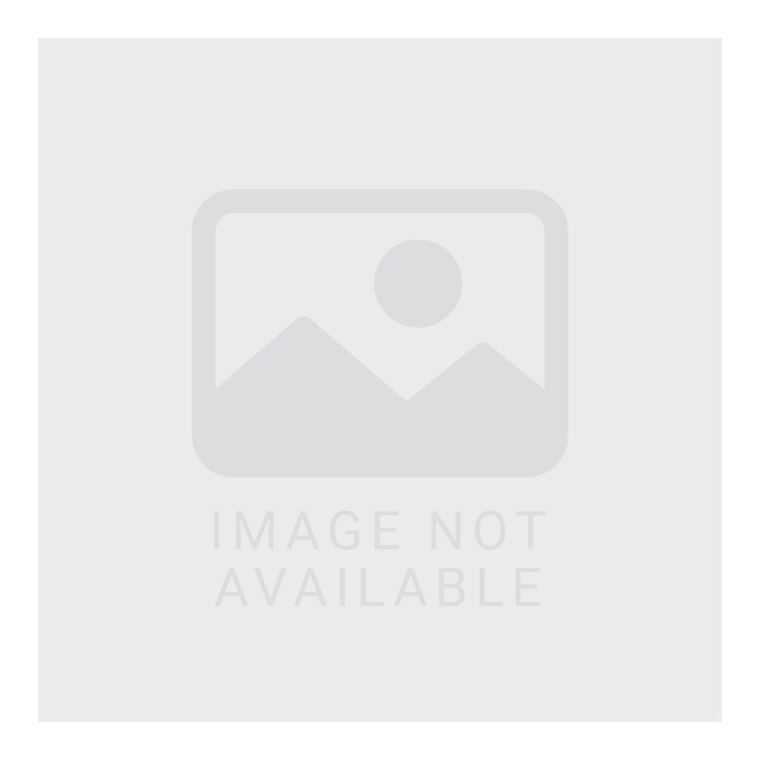 ABARTH 25 oz Stainless Steel Bottle